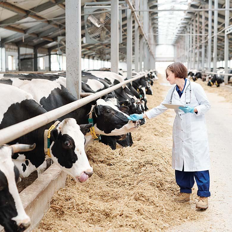 Raziskave in razvoj na področju krme za živali, lesne biomase, varovanja okolja